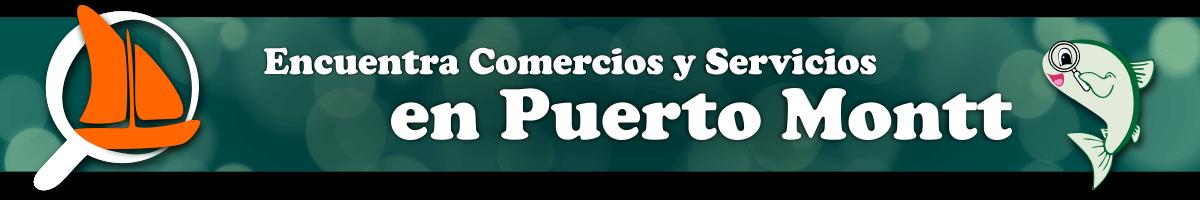 Puerto Montt - Comercios y Servicios